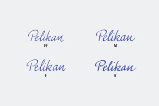Pelikan M1000 Replacement Nib Unit