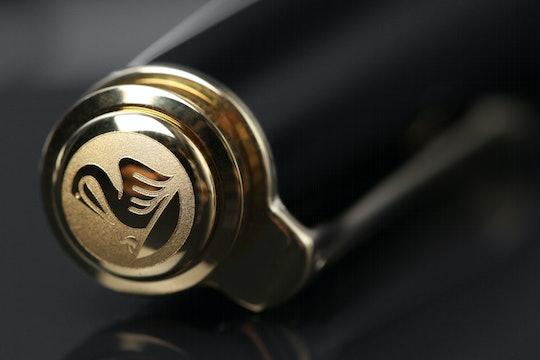 Pelikan Souveran M600 Fountain Pen