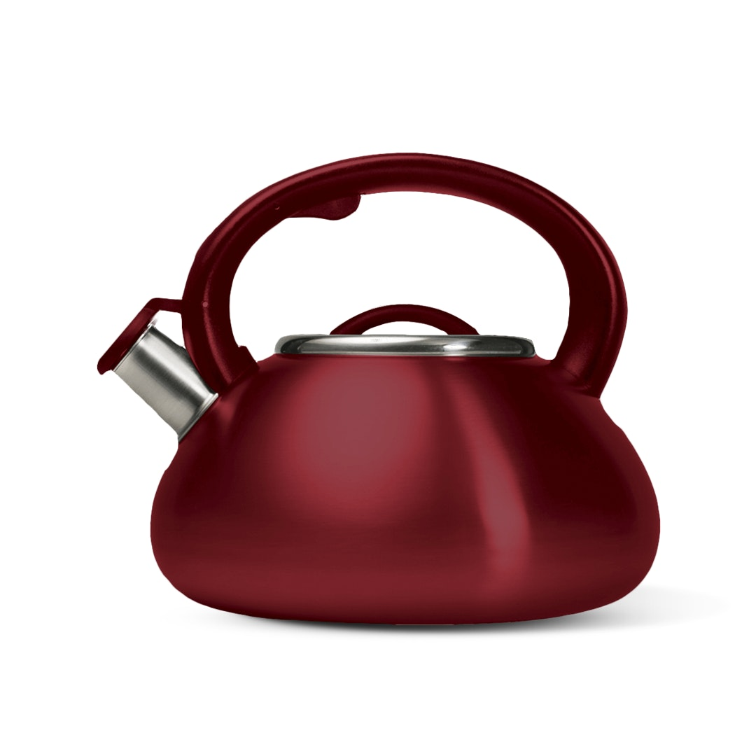Primula Avalon 2.5-Quart Stainless Steel Kettle