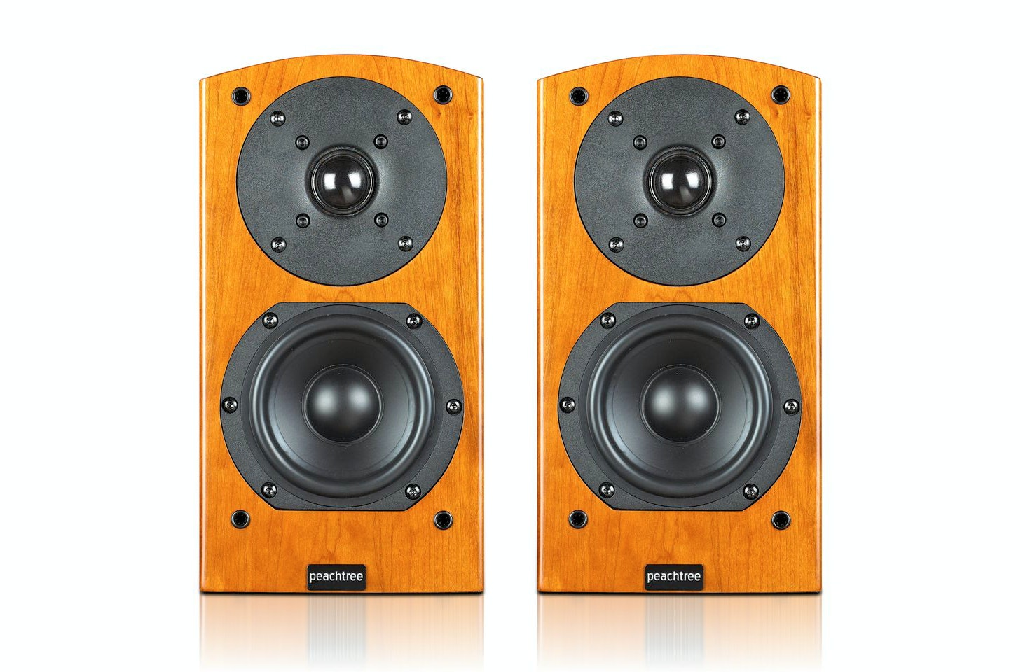Peachtree Audio D4 Passive Speakers