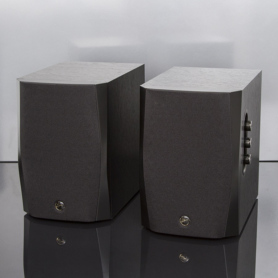 HiVi D1010/D1080 Mk IV Powered Speakers