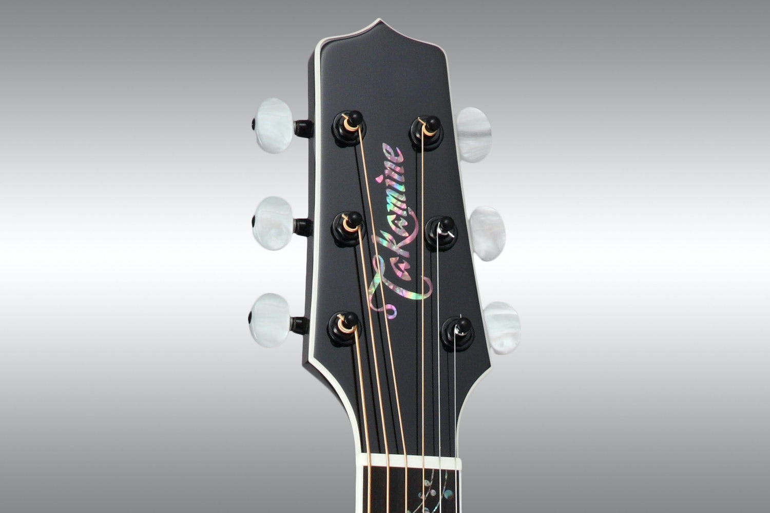 Takamine LTD 2015 Renge-So Guitar