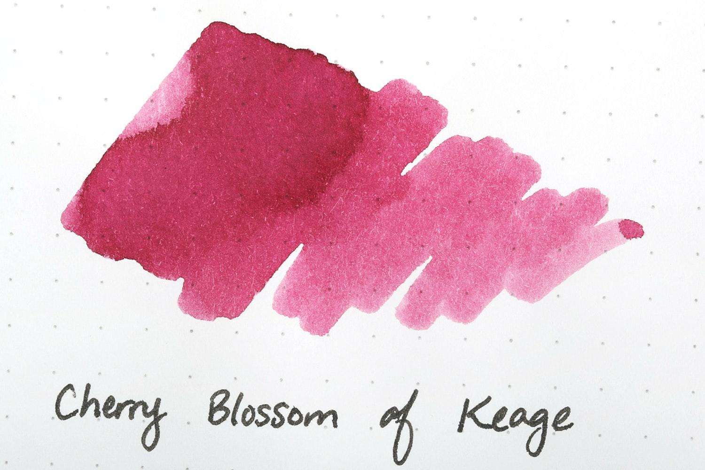 Cherry Blossom of Keage
