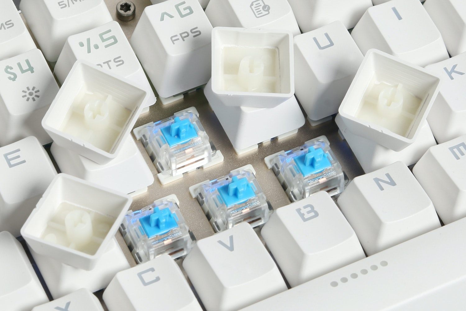 Team Wolf Swappable Switch Keyboard Bundle