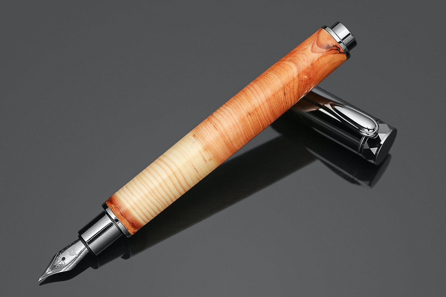Tree Ring Natural History Fountain Pen