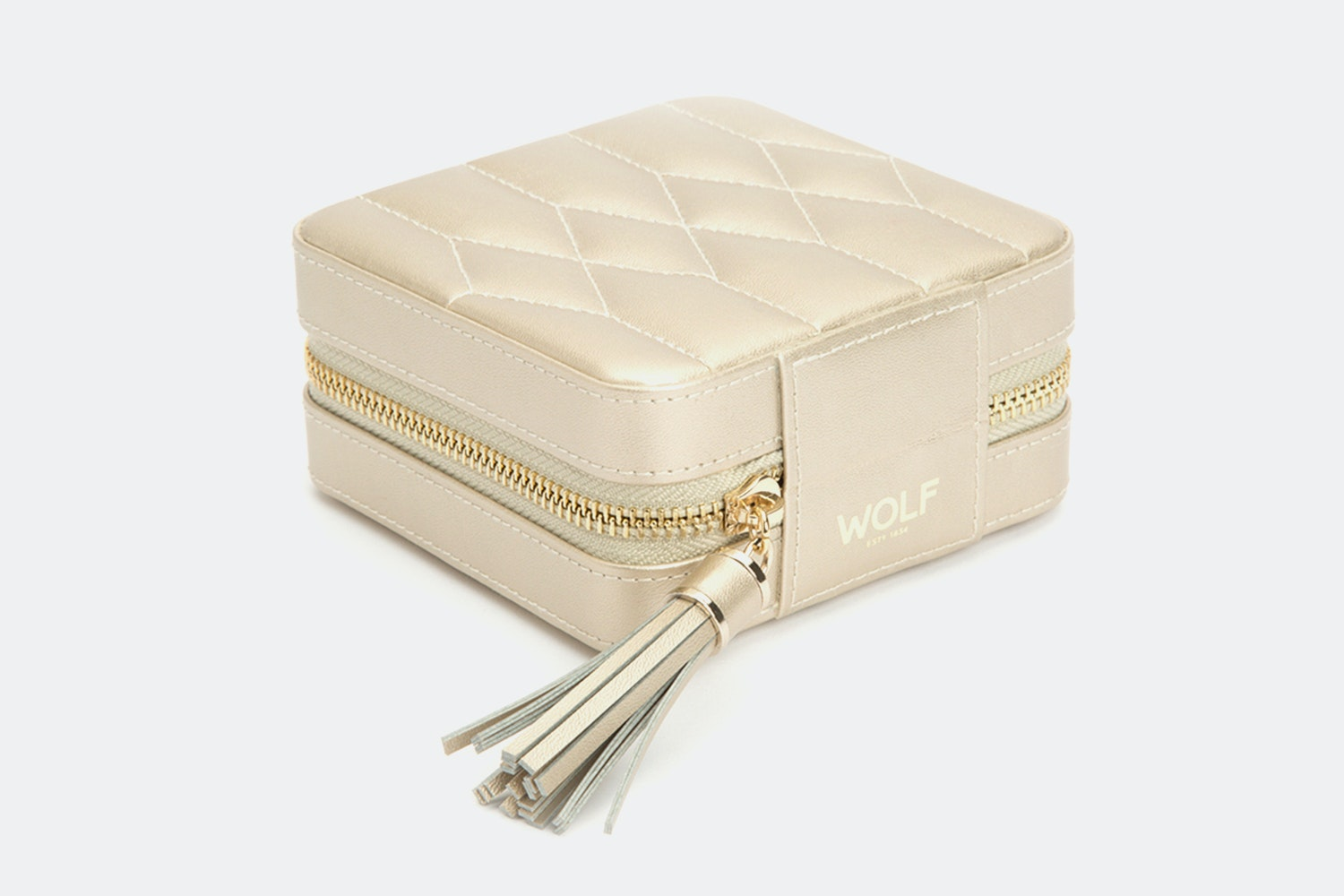 Zip Travel Case | Champagne