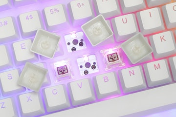 Womier TKL RGB Hot-Swappable Acrylic Mechanical Keyboard